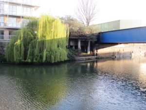 Limehouse Cut 8 ws